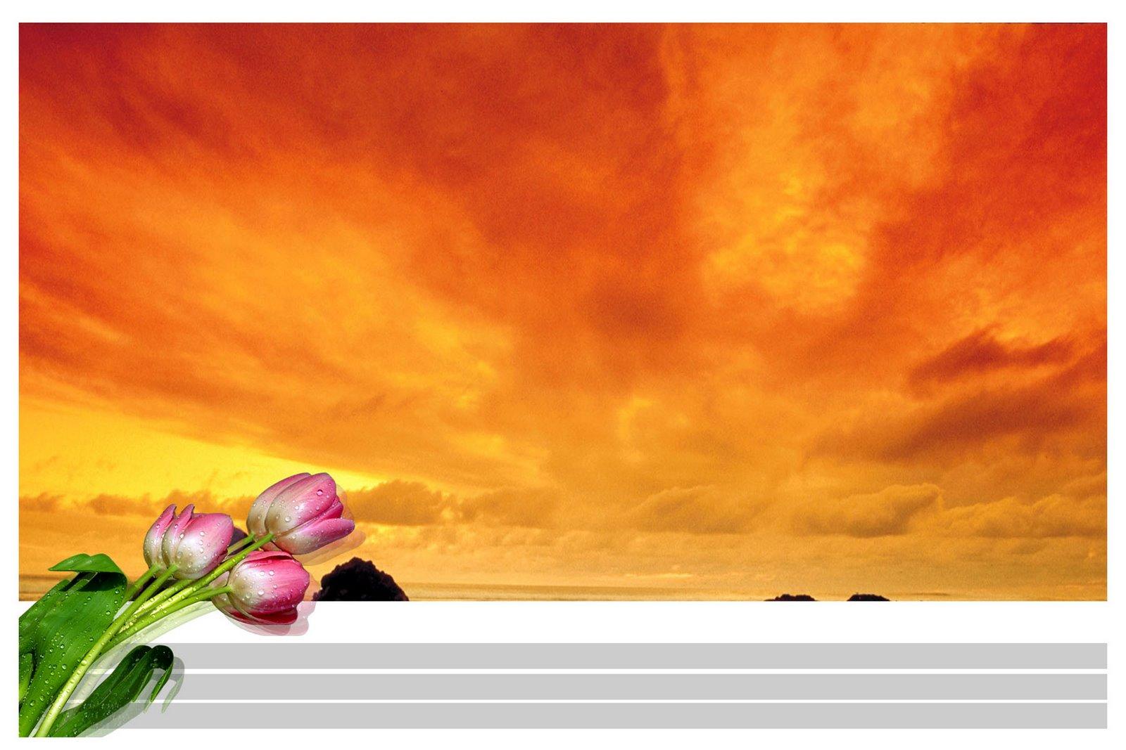 Gt Best Backgrounds For Designing In Photoshop Ajantastudio